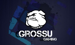 Grossu Gaming TEAM