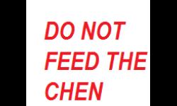 CHEN+FEED