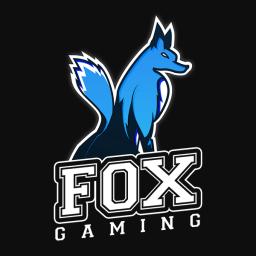 Fox Gaming Youth